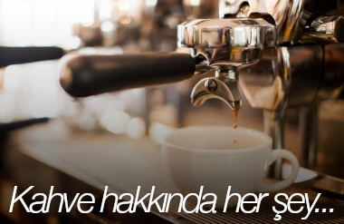 Kanguru Blog - Kahve hakkında her şey...